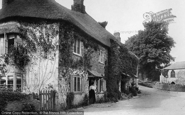Photo of Ermington, Old Cottages 1903