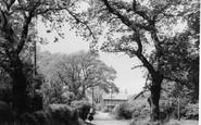 Everton, Corner c.1955