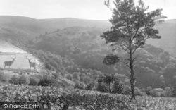 Exmoor, Horner Woods From Dunkery Beacon 1921