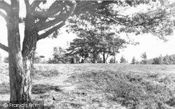 Exmoor, On Dunkery Hill c.1955