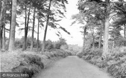 Exmoor, The Road To Webbers Post c.1955