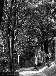 The Plantation 1890, Exmouth