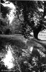 Exning, The Stream, Ducks Lane c.1955