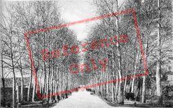 Passeggio Pubblico c.1910, Faenza