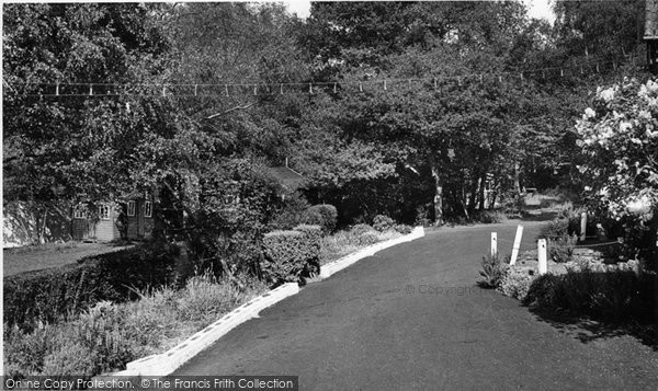 Photo of Farley Green, The Entrance, Tree Tops Holiday Camp c.1955