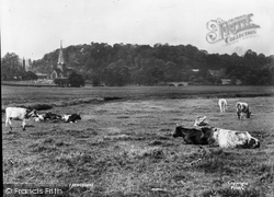 Farncombe, The Meadows 1907
