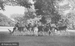 Farnham, Park 1906
