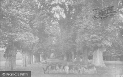 Farnham, Park Avenue 1895