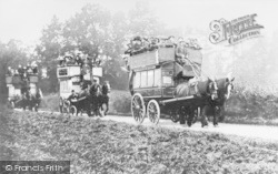 Faversham, Hop Pickers Arriving In Horse-Drawn Buses c.1900