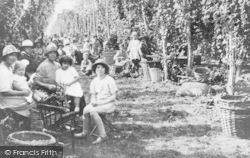 Faversham, Hop Picking 1935
