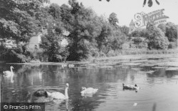 Faversham, Stonebridge Pond c.1960
