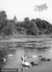 Faversham, The Pond And Church c.1960