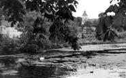 Faversham, the Pond c1960