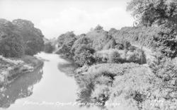 The River Coquet From Old Bridge c.1955, Felton