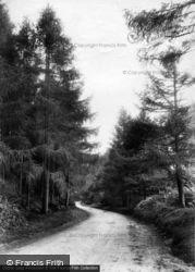 Road 1910, Fernhurst