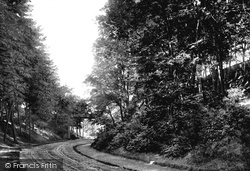 Church Ravine 1890, Filey