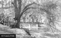 Finchale Priory, The Toll Bridge c.1950