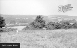 Findon, General View From Stable Lane c.1955
