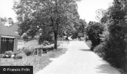 Findon, Paddock Way c.1955