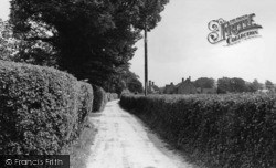 Findon, Steep Lane c.1955