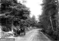 Fleet, Elvetham Road 1904