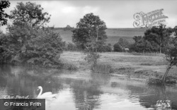 The Pond c.1955, Fontmell Magna
