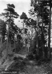 Fordingbridge, Sandyballs c.1950