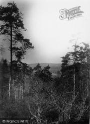 Fordingbridge, The River Avon From Top Of Sandyballs c.1950
