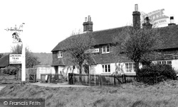 The Parrot Inn c.1955, Forest Green