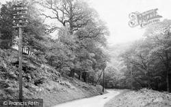 Forest Of Dean, Near Milkwall 1906