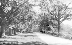 Forest Of Dean, Speech House Road c.1950