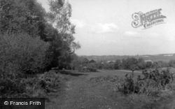 Forest Row, The Golf Course c.1955