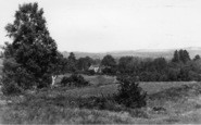 Forest Row, View Over Golf Course And Warren c.1955