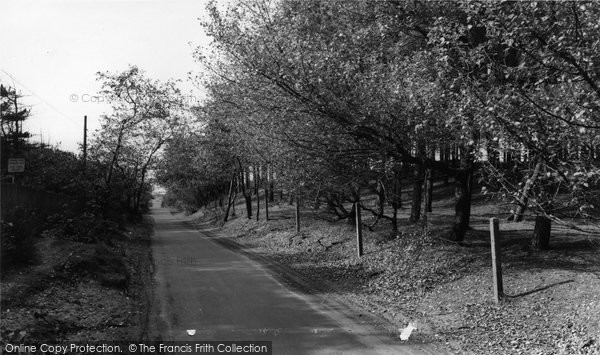 Photo of Formby, The Pinewoods, Lifeboat Road c.1965