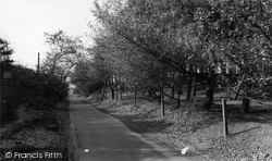 Formby, The Pinewoods, Lifeboat Road c.1965