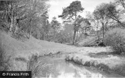 The Glen From The Cleuch Bridge c.1955, Forth