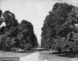 Fountains Abbey, Studley Park, Lime Tree Avenue And Church c.1874