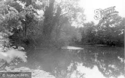 The Pond c.1950, Four Elms
