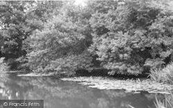 The Pond c.1960, Four Elms