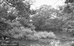 Four Elms, The Village Pond c.1955