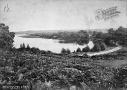 The Pond 1909, Frensham
