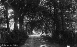 Freshwater Bay, Lane At Farringford c.1883