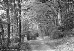 Friday Street, The Woods Gate 1921
