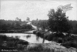 Frimley, Blackdown, Frith Hill 1908