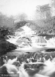 Ganllwyd, Falls On The Mawddach c.1890