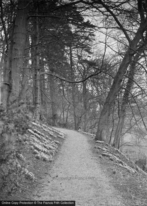Photo of Gargrave, Eshton Hall Woods c.1910
