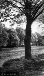Gargrave, The River c.1955