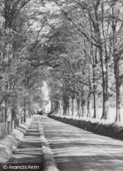 Gawsworth, The Avenue c.1960