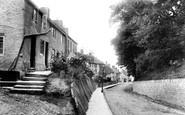 Glastonbury photo