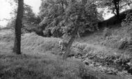 Glusburn Moor photo
